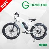 Bicicleta eléctrica 1000W dos motor de la Bicicleta eléctrica