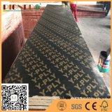 Сертификат Fsc 610X2440мм фанеры с черной пленкой