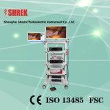 Neue Ankunft! ! ! Bewegliches HD Geräten-Endoskopie-Kamera-Set mit Note LCD-Bildschirm u. WB-Taste