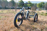 Fat Tire 3wheels Electric Bike Cargo Electric Trike Tricycle