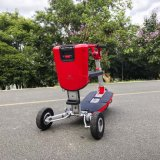 X1 Imoving intelligentes mini parcours de golf de loisirs de plein air 3 roue Scooter à deux places