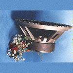 Haut-parleurs de qualité ALCP1256DM