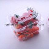 Recipiente plástico alimento desobstruído/transparente/caixa descartável/empacotamento de alimento Frozen de empacotamento