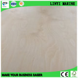 Alta qualidade Báltico da madeira compensada do vidoeiro para a mobília ou supermercado nos EUA