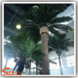 Hot Sale Plastic Artificial Date Palm Feito de fibra de vidro