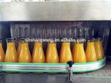 고품질 완전한 알로에 Vera 주스 생산 라인, 판매를 위한 기계
