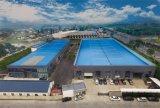 Capacidad automática completa 18000 20000 24000 botellas por la fabricación de la máquina de rellenar del agua mineral del Cgf de la hora