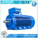 Parti approvate del motore Y3 del Ce con l'alloggiamento del ghisa