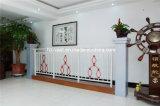 Balustrade en acier galvanisée décorative de haute qualité 9 de balcon d'alliage d'aluminium