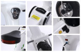 2017 elektrisches Fahrrad des heißen Rad-36V 2 für Erwachsenen