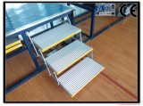 Escalas de aluminio plegables y certificado plegable del CE de los pasos de progresión