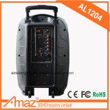 Aktiver Typ PA-nachladbarer im Freien beweglicher Laufkatze-Verstärker-Lautsprecher mit drahtlosem Mic