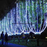 상업적인 행락지 야자수 훈장 분지 LED 끈 빛