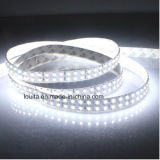 6000-6500blanco de doble fila k Tira LED SMD 2835