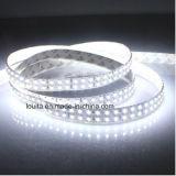 Doble Fila tira de SMD LED 2835 blanco 6000-6500k