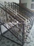 Загородка ковки чугуна для украшений