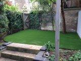 屋外の庭のための草、草(L40)を美化している装飾の草