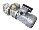 Caja de engranajes del gusano Nmrv040 con variable de la velocidad y el motor de los condensadores