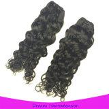 8A等級の加工されていないマレーシアのジャクソンの波のバージンの毛