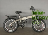 Kurze Stadt, die E-Bicycle/Ebike Electirc fettes Reifen-Energien-Fahrrad 350W 36V faltet