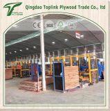Contre-plaqué de bouleau de contre-plaqué stratifié par contre-plaqué marin commercial de contre-plaqué de Linyi d'usine
