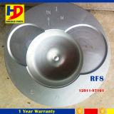 Kolben RF8 mit Pin für Exkavator-Maschinenteile Soem (12011-97161)