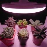 O diodo emissor de luz da alta qualidade do UFO cresce a ampola para plantas internas