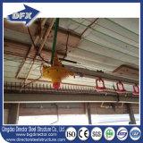 As aves domésticas baratas do edifício de exploração agrícola da galinha do metal abrigam