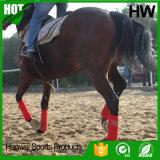 Ботинки лодыжки лошади с Riding