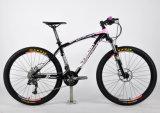 Новый класс горный велосипед (FP-MTB-A049)