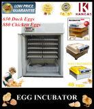 couveuse pour poules industriel automatique