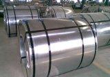 Bobine en acier galvanisée pour la construction
