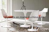 Pranzare & sedia dell'uovo (B011)