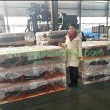 Altos rodamientos de goma que humedecen usados en proyecto del puente en Rusia