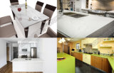 De nieuwe Ontworpen TegenBovenkanten van het Bouwmateriaal van de Plak van het Kwarts Voor Keuken