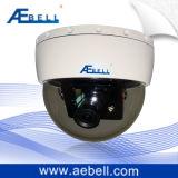 appareil-photo à l'épreuve du vandalisme miniature de dôme de jour/nuit de la couleur 480TVL (BL-CBF300-48)