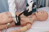 の教授モデル、X-YF56高い情報処理機能をもったデジタルトレーニングシステム産婦人科の技術