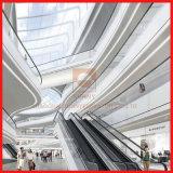 Geschwindigkeit 0.4m/S und 30 Grad-moderner Entwurfs-automatische mechanische Rolltreppe