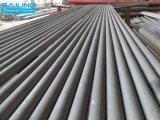 3 Naadloze Pijpen van het Roestvrij staal '' 304/316L