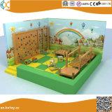 Capretti dell'interno di legno personalizzati del campo da giuoco all'interno del castello di legno del playhouse