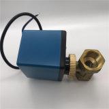 Misura elettrica per la valvola a farfalla della cialda dell'acqua potabile