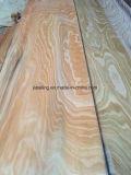 Boa madeira de faia para madeira compensada