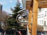 소형 고품질 태양 에너지 LED 가벼운 정원