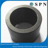 De gesinterde Magneet van de Ring van de Motor van het Ferriet Anisotrope