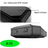 Perseguidor del GPS del vehículo con la localización bimodal de GPS+Lbs (A10)