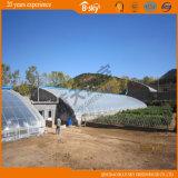Serra solare della pellicola usata come giardino di raccolto