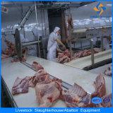 Linea di trasformazione strumentazione del mattatoio della linea di macello del maiale