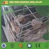 Los expertos de Muro Gabion Box Gabion soldada / Entrada de malla de adoquines