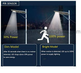 2017 nuevo LED Produts 3 años de la garantía 8W LED de luz de calle solar