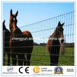 Clôture en fil métallique et clôture de cheval
